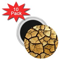 Dry Ground 1 75  Magnets (10 Pack)  by Onesevenart