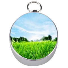Green Landscape Green Grass Close Up Blue Sky And White Clouds Silver Compasses by Onesevenart