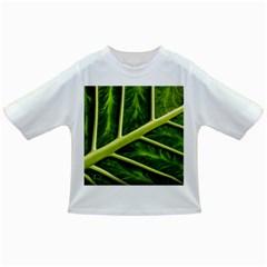 Leaf Dark Green Infant/toddler T Shirts by Onesevenart