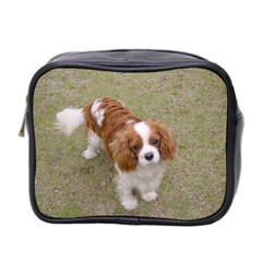 Cavalier King Charles Spaniel Blenheim Full Mini Toiletries Bag 2-Side by TailWags