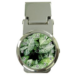 Green Leaves Nature Pattern Plant Money Clip Watches by Amaryn4rt