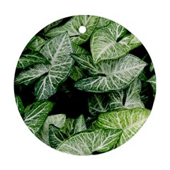 Green Leaves Nature Pattern Plant Round Ornament (two Sides) by Amaryn4rt