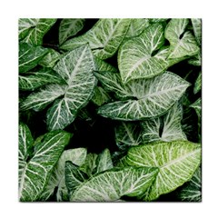 Green Leaves Nature Pattern Plant Face Towel by Amaryn4rt