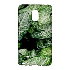 Green Leaves Nature Pattern Plant Galaxy Note Edge by Amaryn4rt