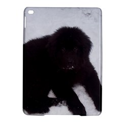 Newfoundland Puppy Ipad Air 2 Hardshell Cases by TailWags