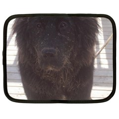 Newfoundland Puppy Muddy Netbook Case (XXL)  by TailWags