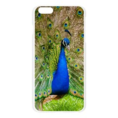 Peacock Animal Photography Beautiful Apple Seamless iPhone 6 Plus/6S Plus Case (Transparent) by Amaryn4rt