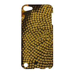 Sunflower Bright Close Up Color Disk Florets Apple Ipod Touch 5 Hardshell Case by Amaryn4rt