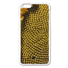 Sunflower Bright Close Up Color Disk Florets Apple Iphone 6 Plus/6s Plus Enamel White Case by Amaryn4rt