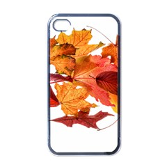 Autumn Leaves Leaf Transparent Apple Iphone 4 Case (black) by Amaryn4rt