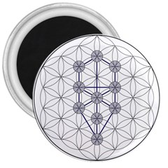 Tree Of Life Flower Of Life Stage 3  Magnets by Nexatart