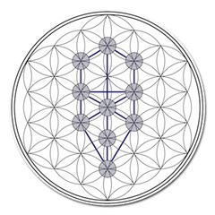 Tree Of Life Flower Of Life Stage Magnet 5  (round) by Nexatart