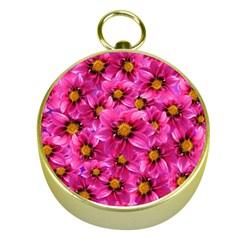 Dahlia Flowers Pink Garden Plant Gold Compasses by Nexatart
