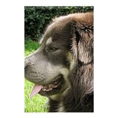 Tibetan Mastiff Shower Curtain 48  x 72  (Small)  by TailWags