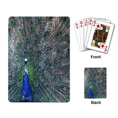 Peacock Four Spot Feather Bird Playing Card by Nexatart