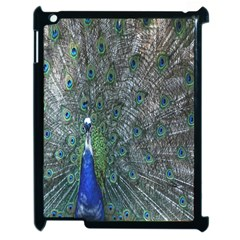 Peacock Four Spot Feather Bird Apple iPad 2 Case (Black) by Nexatart