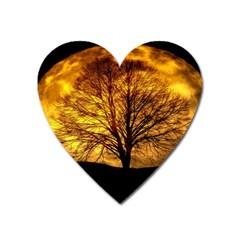 Moon Tree Kahl Silhouette Heart Magnet by Nexatart
