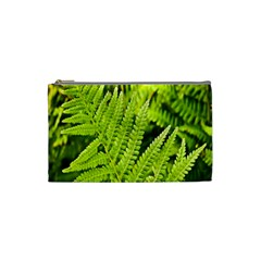 Fern Nature Green Plant Cosmetic Bag (small)  by Nexatart