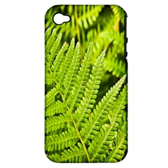 Fern Nature Green Plant Apple Iphone 4/4s Hardshell Case (pc+silicone) by Nexatart