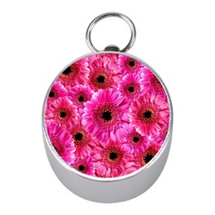 Gerbera Flower Nature Pink Blosso Mini Silver Compasses by Nexatart