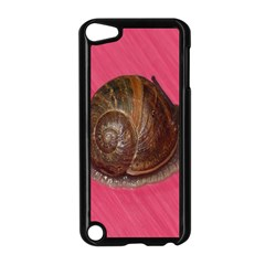 Snail Pink Background Apple Ipod Touch 5 Case (black) by Nexatart