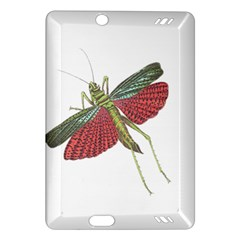Grasshopper Insect Animal Isolated Amazon Kindle Fire Hd (2013) Hardshell Case by Nexatart