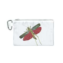 Grasshopper Insect Animal Isolated Canvas Cosmetic Bag (s) by Nexatart