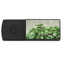 Plants Against Concrete Wall Background Usb Flash Drive Rectangular (4 Gb) by dflcprints
