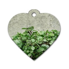Plants Against Concrete Wall Background Dog Tag Heart (one Side) by dflcprints