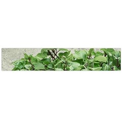 Plants Against Concrete Wall Background Flano Scarf (large)  by dflcprints