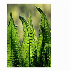 Fern Ferns Green Nature Foliage Small Garden Flag (Two Sides)