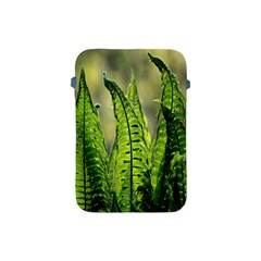 Fern Ferns Green Nature Foliage Apple Ipad Mini Protective Soft Cases by Nexatart