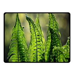 Fern Ferns Green Nature Foliage Double Sided Fleece Blanket (small)  by Nexatart
