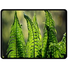 Fern Ferns Green Nature Foliage Double Sided Fleece Blanket (large)  by Nexatart