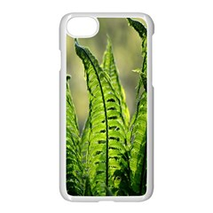 Fern Ferns Green Nature Foliage Apple Iphone 7 Seamless Case (white) by Nexatart