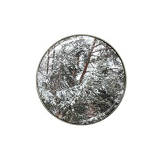 Winter Fall Trees Hat Clip Ball Marker (4 Pack) by ansteybeta