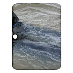 2 Flat Coated Retrievers Swimming Samsung Galaxy Tab 3 (10.1 ) P5200 Hardshell Case  by TailWags