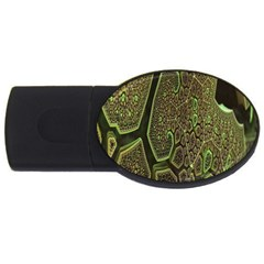 Fractal Complexity 3d Dimensional Usb Flash Drive Oval (4 Gb) by Nexatart