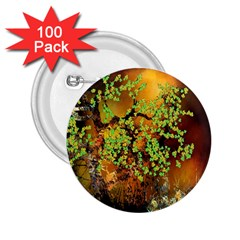 Backdrop Background Tree Abstract 2 25  Buttons (100 Pack)  by Nexatart