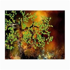 Backdrop Background Tree Abstract Small Glasses Cloth by Nexatart