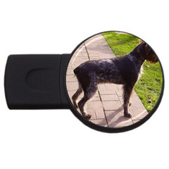 German Wirehaired Pointer Full USB Flash Drive Round (4 GB) by TailWags
