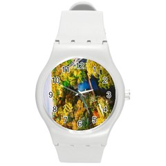 Bridge River Forest Trees Autumn Round Plastic Sport Watch (m) by Nexatart