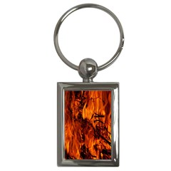 Fire Easter Easter Fire Flame Key Chains (rectangle)  by Nexatart