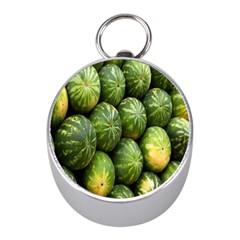 Food Summer Pattern Green Watermelon Mini Silver Compasses by Nexatart