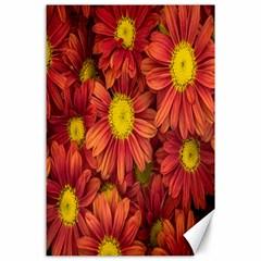 Flowers Nature Plants Autumn Affix Canvas 24  X 36  by Nexatart