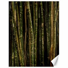 Green And Brown Bamboo Trees Canvas 18  x 24
