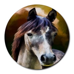 Horse Horse Portrait Animal Round Mousepads