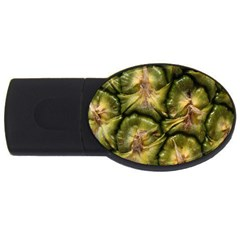 Pineapple Fruit Close Up Macro Usb Flash Drive Oval (4 Gb) by Nexatart