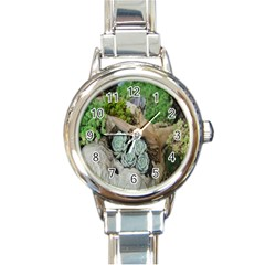 Plant Succulent Plants Flower Wood Round Italian Charm Watch by Nexatart