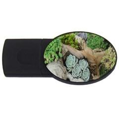 Plant Succulent Plants Flower Wood Usb Flash Drive Oval (2 Gb) by Nexatart